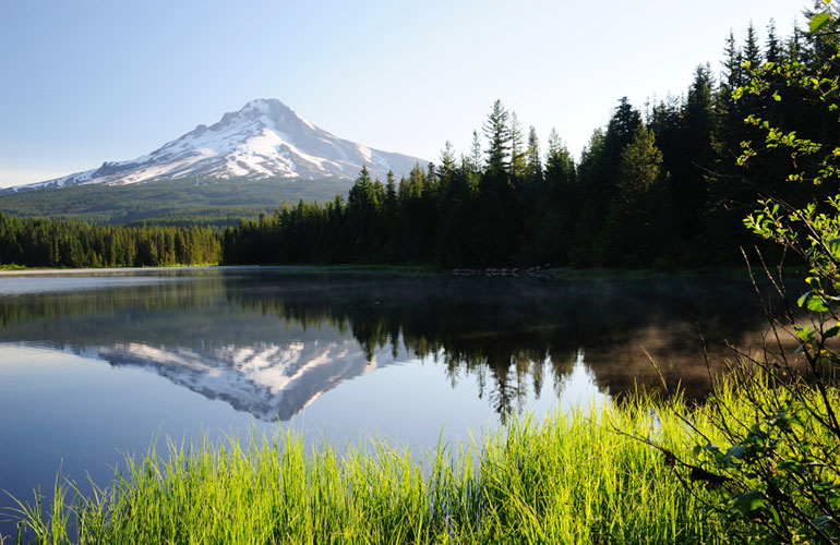 George Fox's Christian-worldview PsyD program is located in the beautiful Pacific Northwest